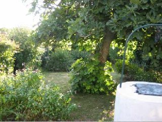 Peque a casa rustica con jardin en cangas for Jardin 911